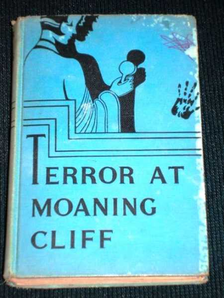 Image for Terror at Moaning Cliff (Melody Lane Mystery Stories)