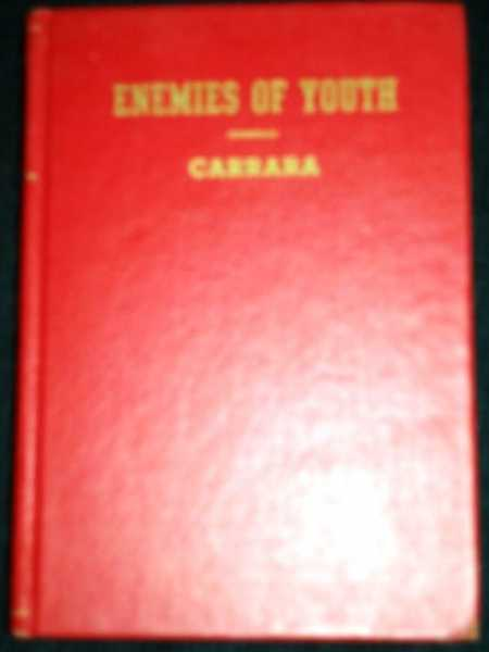 Image for Enemies of Youth