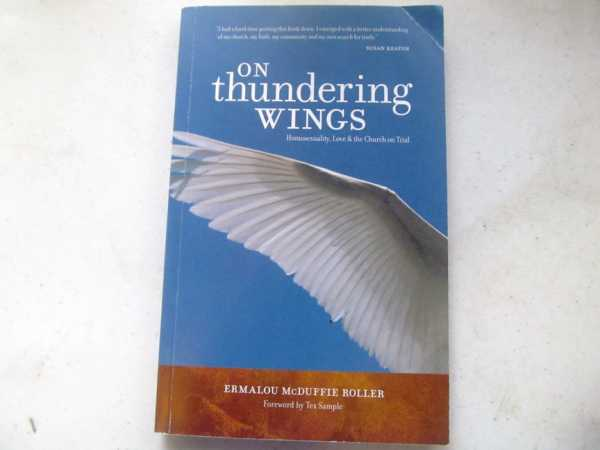 Image for On Thundering Wings:  Homosexuality, Love, & the Church on Trial