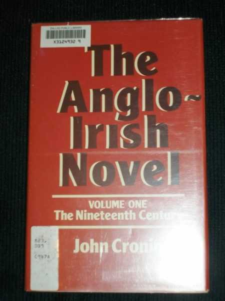 Image for Anglo-Irish Novel, The:  Volume One - The Nineteenth Century