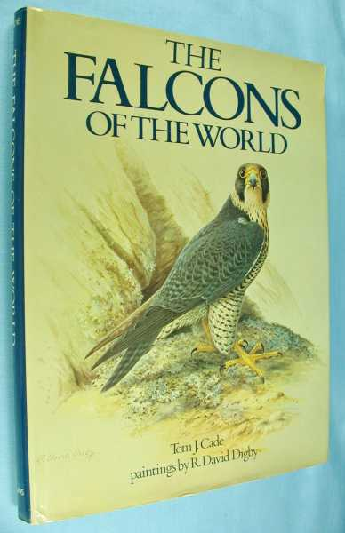 Image for The Falcons of the World